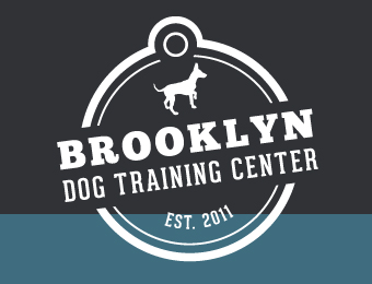 Brooklyn Dog Training Center